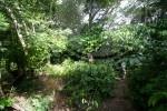 Habitat Djangoa