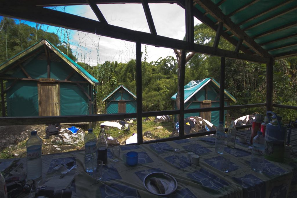 Camp 1 Marojejy