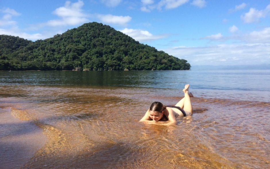 Die Insel der Blattschwanzgeckos