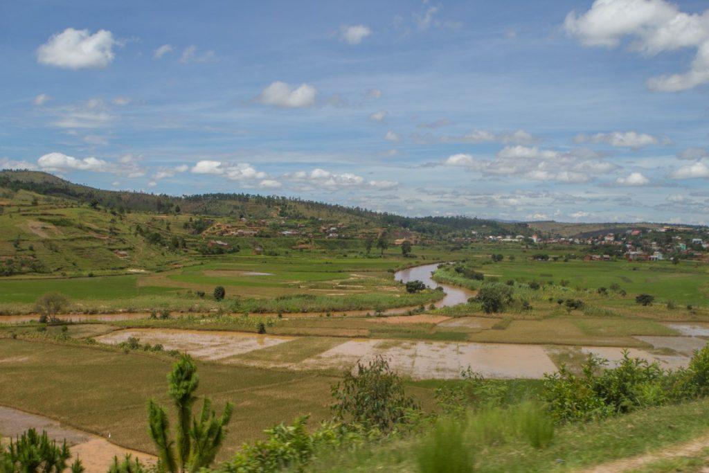 Reisfelder im südlichen Hochland