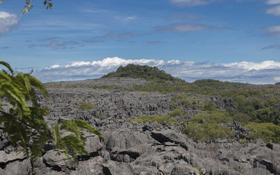 Das Felsenmeer von Ankarana