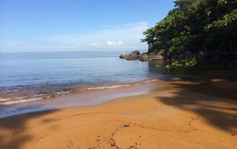 Zwischen Meeresrauschen und Regenwald