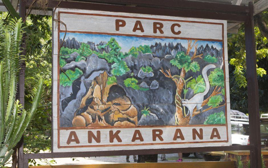 Die Reptilien von Ankarana