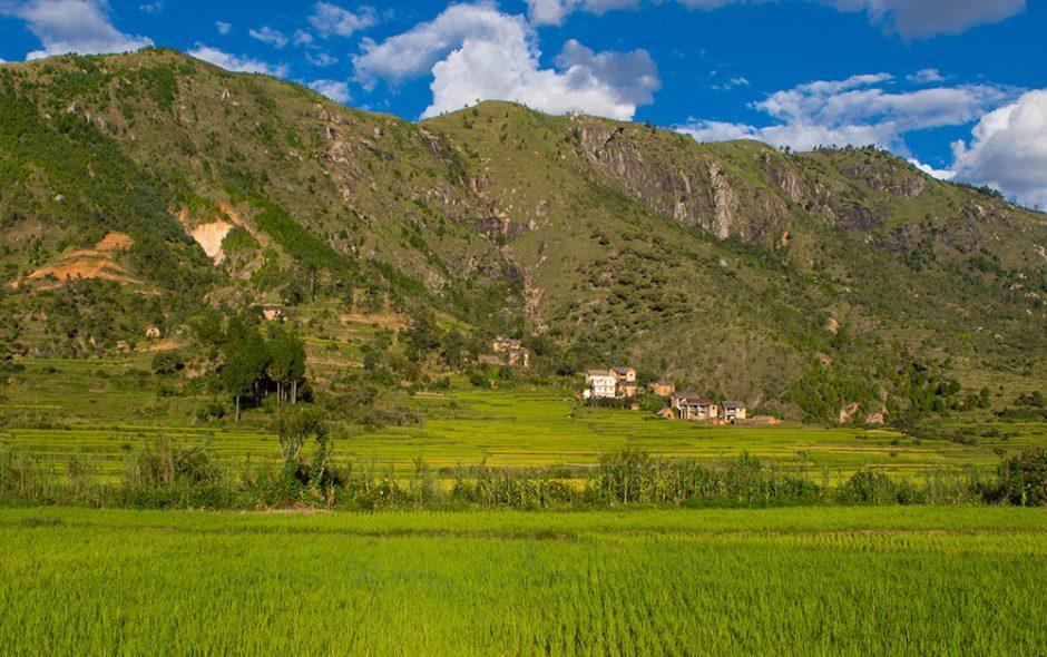 Zurück nach Antsirabe